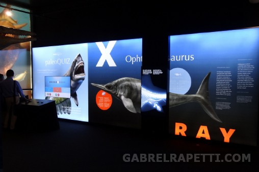 Elettronica interattiva per il Paleoaquarium - Genova