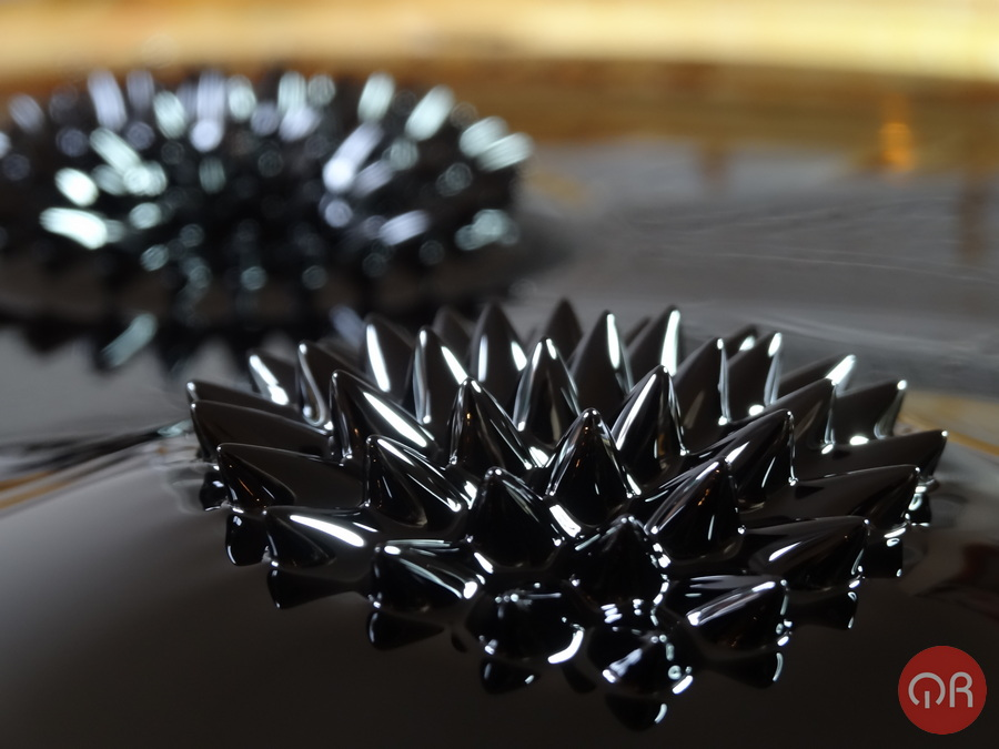 """Clasici """"fiori"""", visibili in un ferrofluido quando viene attraversato da un campo magnetico."""